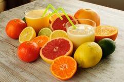 Zitrusfruchtstillleben Lizenzfreie Stockbilder