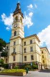 Zittau, Saxony, Niemcy zdjęcia royalty free
