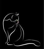Zittende witte kat Stock Afbeelding
