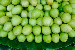 Ziziphus mauritiana at rural market stock photo