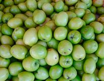 Ziziphus mauritiana, also known as Jujube royalty free stock images