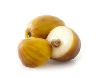Ziziphus mauritiana (Indian plum). Ziziphus mauritiana also called Indian Ber, Chinee Apple, Jujube, Indian plum and Masau isolated on white background stock photos