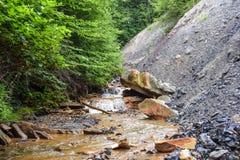 Zjadliwy Kopalniany drenaż w Appalachian górach Obrazy Royalty Free