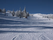 zjazdowy narciarstwo obrazy stock