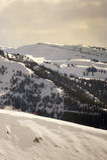 Zjazdowy narciarstwo Obraz Stock