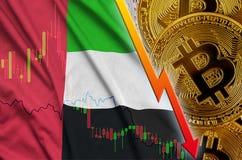 Zjednoczone Emiraty Arabskie cryptocurrency i flagi spada trend z wiele złotymi bitcoins ilustracja wektor