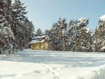 Zlatibor Στοκ Εικόνες