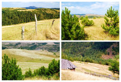 Fields and meadows Stock Image