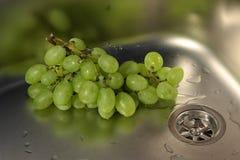 zlew gronowy wino obraz stock