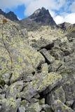 Zlomiskova dolina i Vysoke Tatry Arkivbilder