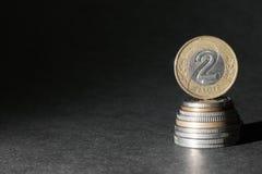 Zloty due Fotografie Stock