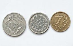 zloty för myntvalutapolermedel Fotografering för Bildbyråer