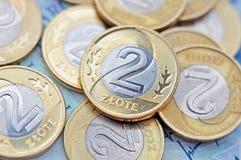 Zloty polacca Immagini Stock Libere da Diritti