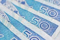 Zloty polacca Fotografia Stock Libera da Diritti