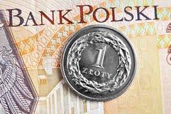 Zloty polacca Fotografie Stock