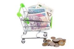 Zloty polacca nel carretto a mano di acquisto, isolato Immagine Stock Libera da Diritti