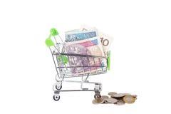 Zloty polacca nel carretto a mano di acquisto, isolato Immagini Stock Libere da Diritti