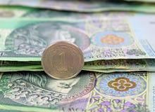 Zloty polacca (soldi) Immagine Stock Libera da Diritti