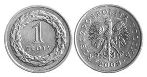 Zloty polacco Fotografia Stock Libera da Diritti