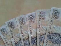 Zloty tvåhundra Royaltyfri Fotografi