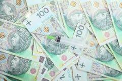 zlotysedlar för polermedel 100's som pengarbakgrund Arkivfoto