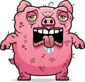 Zmęczona Brzydka świnia Zdjęcia Royalty Free
