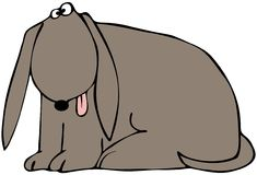 Zmęczony pies Zdjęcie Royalty Free