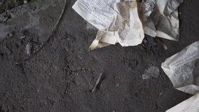 Zmięte książkowe strony kłamają na betonowej podłodze zaniechany budynek Wina szkło spada podłoga i łama zdjęcie wideo