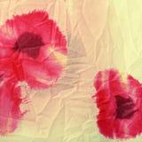 zmiętej tkaniny kwieciści maczki czerwoni Obrazy Royalty Free