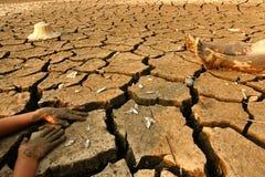 Zmiany klimatu ziemski nagrzanie Obraz Royalty Free