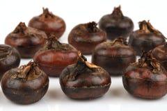 Zmielony chesnut, Chińskie wodnych kasztanów owoc Thailand Zdjęcie Royalty Free
