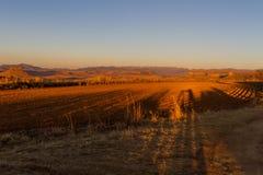 Zmierzchów cienie na gospodarstwie rolnym Zdjęcie Royalty Free