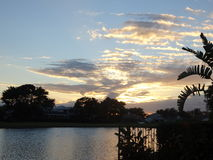 Zmierzchów drzewek palmowych horyzont i chmury zdjęcia royalty free