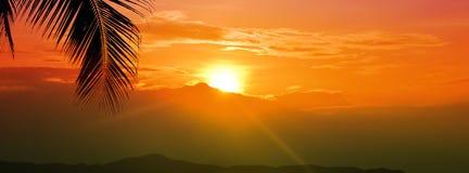 Zmierzch godziny złoty niebo z słońcem nad halnym i palmowym liściem dla wakacje sztandaru szerokiego tła zdjęcia royalty free