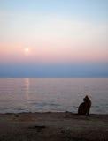 Zmierzch i księżyc w pełni na dennym brzeg z domowym kotem Obrazy Royalty Free