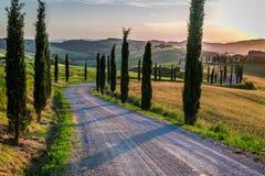 Zmierzch i wijąca droga z cyprysami w Tuscany zdjęcia stock