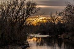 Zmierzch na Boise rzece przez muśnięcia i drzew Zdjęcie Stock