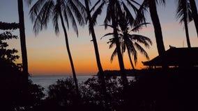 Zmierzch na dennym wybrzeżu Bali, Indonezja zbiory wideo
