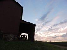Zmierzch na gospodarstwie rolnym Obrazy Stock