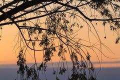 Zmierzch na Jeziornym Erie Zdjęcia Royalty Free