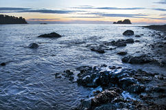 Zmierzch na północnego zachodu Pacyficznym oceanie Z Skalistym wybrzeżem Obrazy Royalty Free