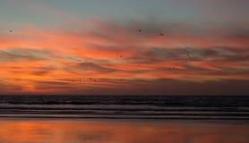 Zmierzch na plaży Agadir w Maroko Fotografia Royalty Free