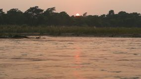 Zmierzch na spokojnej rzece w lecie Słońce odbija na spokój wodzie z zielonym brzeg Chitwan safari Krajowy park w Nepal zdjęcie wideo