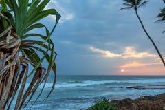 Zmierzch na tropikalnej linii brzegowej Zdjęcia Stock