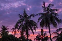 Zmierzch na tropikalnym Lombok w Indonezja Obrazy Royalty Free
