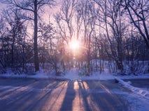 Zmierzch na zamarzniętym lasowym jeziorze w zimie fotografia stock