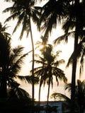 Zmierzch na Zanzibar Zdjęcie Stock