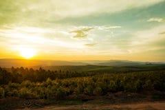 Zmierzch Nad doliną w Mpumalanga Południowa Afryka Obrazy Stock