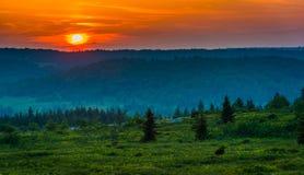 Zmierzch nad Dolly Darniuje pustkowie, Monongahela las państwowy, fotografia royalty free