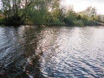 Zmierzch nad jeziorem w wiośnie z chodzenie fala chmurą i czochrami Zdjęcia Royalty Free